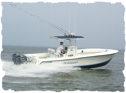 Notorious sportfishing chesapeake bay charter fishing for Annapolis fishing charters